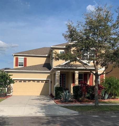 3207 Dark Sky Drive, Harmony, FL 34773 (MLS #S5031695) :: Griffin Group