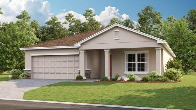 14430 Hidden Court, Clermont, FL 34711 (MLS #S5031751) :: Team Bohannon Keller Williams, Tampa Properties