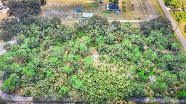 2521 Absher Road, Saint Cloud, FL 34771 (MLS #S5032009) :: Griffin Group