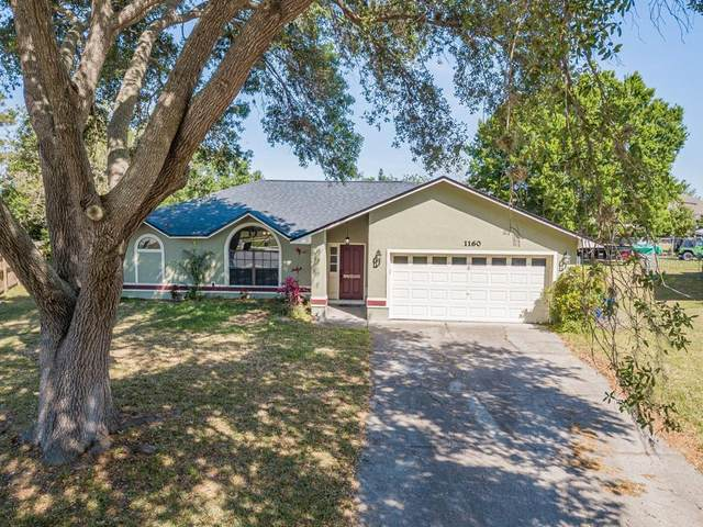 1160 Anne Elisa Circle, Saint Cloud, FL 34772 (MLS #S5032069) :: RE/MAX Premier Properties