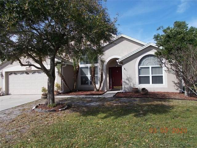 11832 Daneswood Court, Orlando, FL 32821 (MLS #S5032151) :: EXIT King Realty