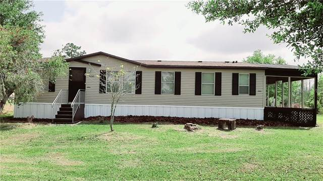 5035 Topeka Avenue, Saint Cloud, FL 34773 (MLS #S5032158) :: Griffin Group