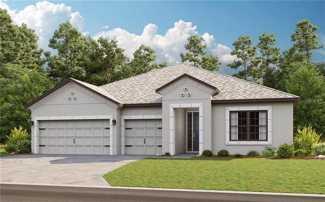 3889 Golden Knot Drive, Kissimmee, FL 34746 (MLS #S5032228) :: Bustamante Real Estate