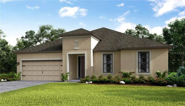 3907 Golden Knot Drive, Kissimmee, FL 34746 (MLS #S5032230) :: Bustamante Real Estate