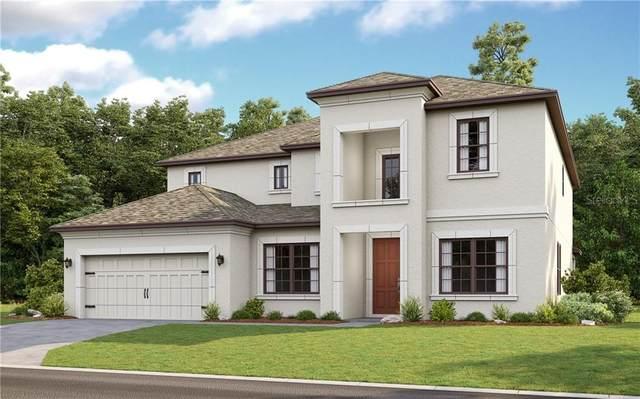 3860 Bowfin Trail, Kissimmee, FL 34746 (MLS #S5032240) :: Bustamante Real Estate