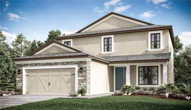 3956 Carrick Bend Drive, Kissimmee, FL 34746 (MLS #S5032243) :: RE/MAX Premier Properties