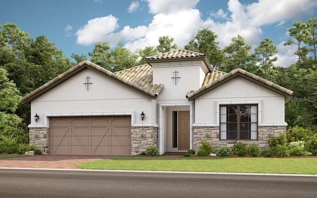 307 Bella Cortina Drive, Kissimmee, FL 34759 (MLS #S5032258) :: Bustamante Real Estate