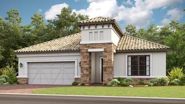 418 Villa Marina Avenue, Kissimmee, FL 34759 (MLS #S5032266) :: Bustamante Real Estate