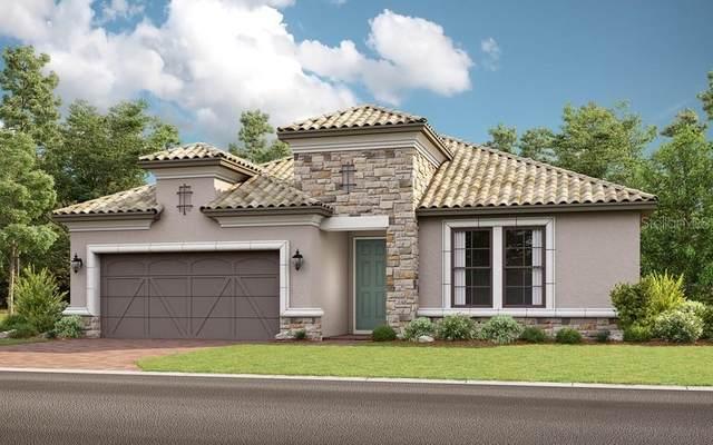 413 Villa Marina Avenue, Kissimmee, FL 34759 (MLS #S5032267) :: Bustamante Real Estate