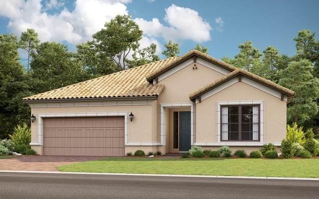 409 Villa Marina Avenue, Kissimmee, FL 34759 (MLS #S5032268) :: Bustamante Real Estate