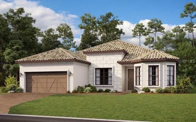 930 Walnut Creek Road, Poinciana, FL 34759 (MLS #S5032535) :: Cartwright Realty