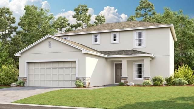 3856 Fescue Street, Clermont, FL 34714 (MLS #S5032660) :: Dalton Wade Real Estate Group