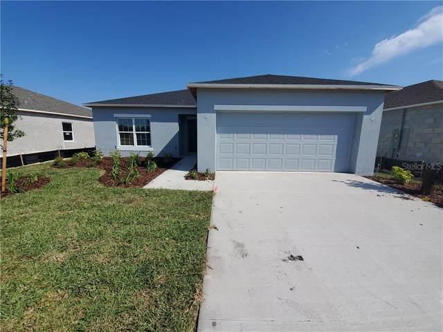 3943 Fescue Street, Clermont, FL 34714 (MLS #S5032669) :: Dalton Wade Real Estate Group
