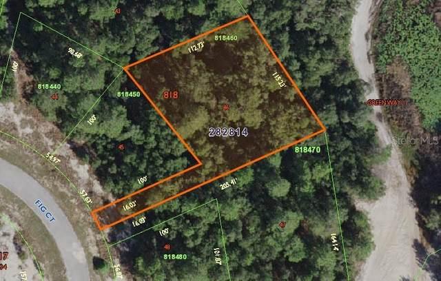 241 Fig Court, Poinciana, FL 34759 (MLS #S5032732) :: Bustamante Real Estate