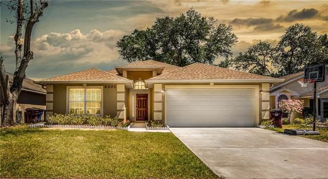 4201 Natchez Trace Drive, Saint Cloud, FL 34769 (MLS #S5032777) :: Bustamante Real Estate