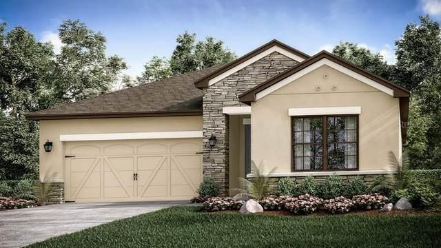 3857 Carrick Bend Drive, Kissimmee, FL 34746 (MLS #S5033524) :: Bustamante Real Estate