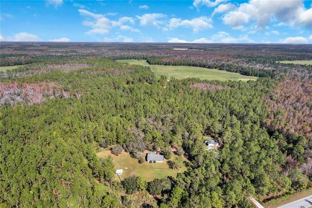 10411 County Road 474, Clermont, FL 34714 (MLS #S5034286) :: Rabell Realty Group