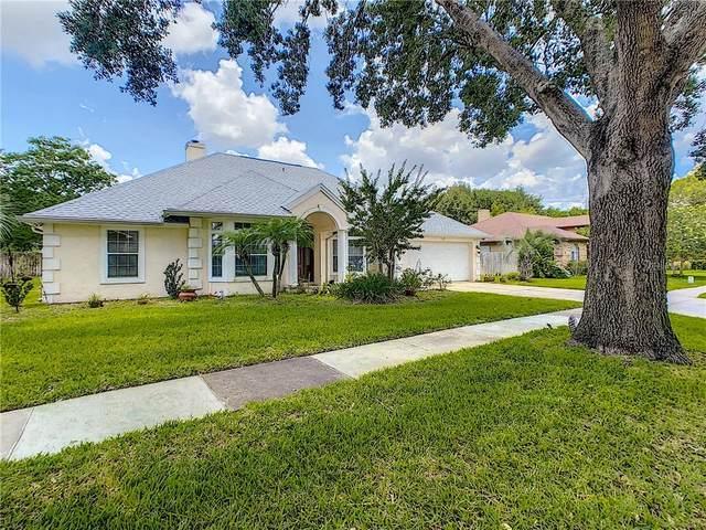 3144 Mcewan View Circle, Orlando, FL 32812 (MLS #S5034803) :: The Price Group