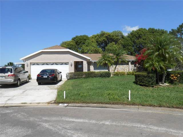 126 Astor Ct, Kissimmee, FL 34743 (MLS #S5034923) :: The Price Group