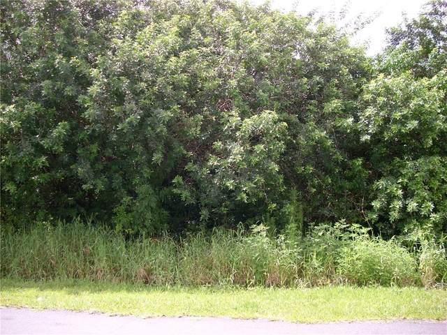1006 Morvan Lane, Kissimmee, FL 34759 (MLS #S5035273) :: The Nathan Bangs Group