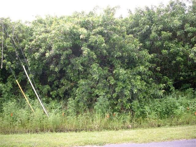 1010 Morvan Lane, Kissimmee, FL 34759 (MLS #S5035280) :: The Nathan Bangs Group