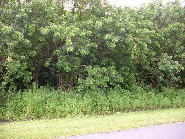 1008 Morvan Lane, Kissimmee, FL 34759 (MLS #S5035285) :: The Nathan Bangs Group