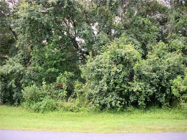 1002 Pantheon Drive, Kissimmee, FL 34759 (MLS #S5035499) :: The Nathan Bangs Group