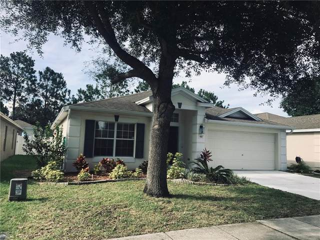 Address Not Published, Brooksville, FL 34604 (MLS #S5035587) :: Griffin Group