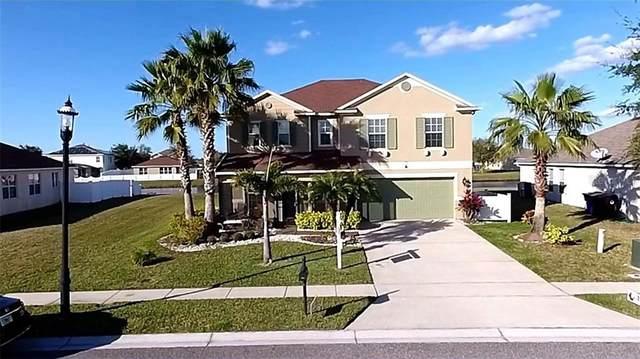3495 Harlequin Drive, Saint Cloud, FL 34772 (MLS #S5035662) :: Dalton Wade Real Estate Group