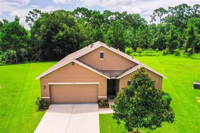 16838 Citrus Parkway, Clermont, FL 34714 (MLS #S5035997) :: Team Bohannon Keller Williams, Tampa Properties