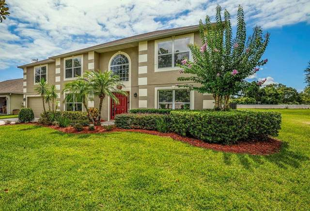 2921 Holly Berry Court, Kissimmee, FL 34744 (MLS #S5036347) :: Pepine Realty