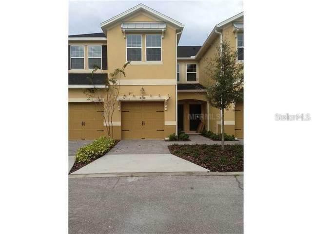 14438 Desert Haven Street #4304, Windermere, FL 34786 (MLS #S5036438) :: Dalton Wade Real Estate Group