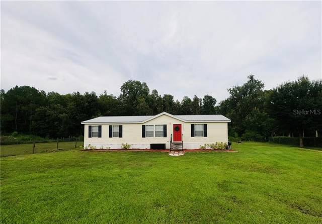 12405 Farmettes Road, Lakeland, FL 33809 (MLS #S5036603) :: Cartwright Realty