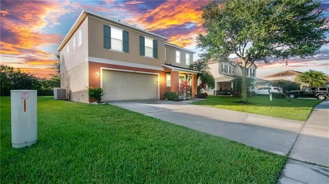 3440 Goldeneye Lane, Saint Cloud, FL 34772 (MLS #S5036612) :: Gate Arty & the Group - Keller Williams Realty Smart