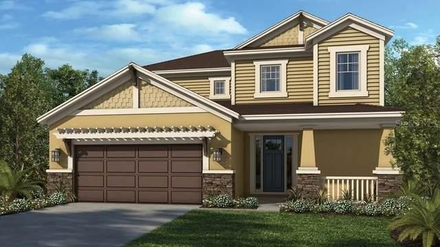 2636 Ridgetop Lane, Clermont, FL 34711 (MLS #S5037598) :: Team Bohannon Keller Williams, Tampa Properties