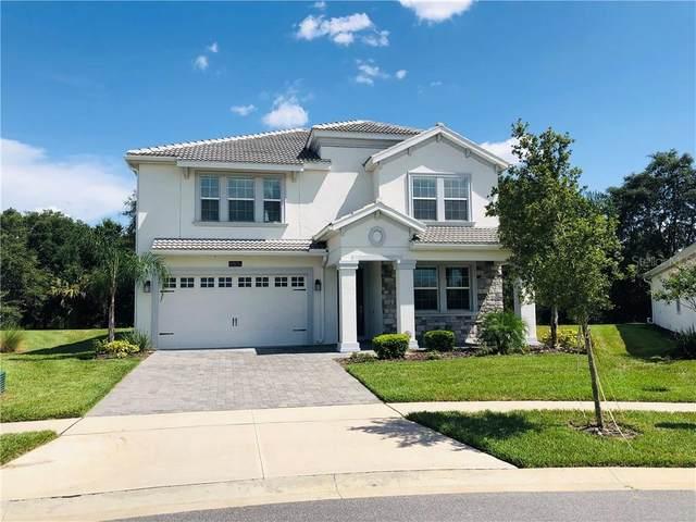 8806 Bally Neal Loop, Davenport, FL 33896 (MLS #S5037640) :: Team Bohannon Keller Williams, Tampa Properties