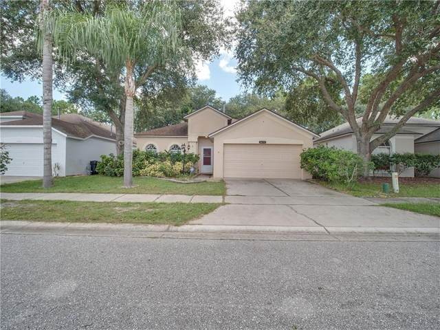 3655 Cinnamon Fern Loop, Clermont, FL 34714 (MLS #S5038063) :: New Home Partners