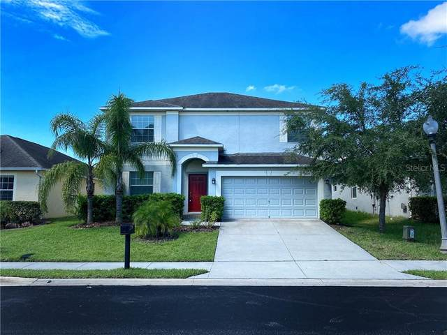 3595 Cortland Drive, Davenport, FL 33837 (MLS #S5038092) :: Premier Home Experts