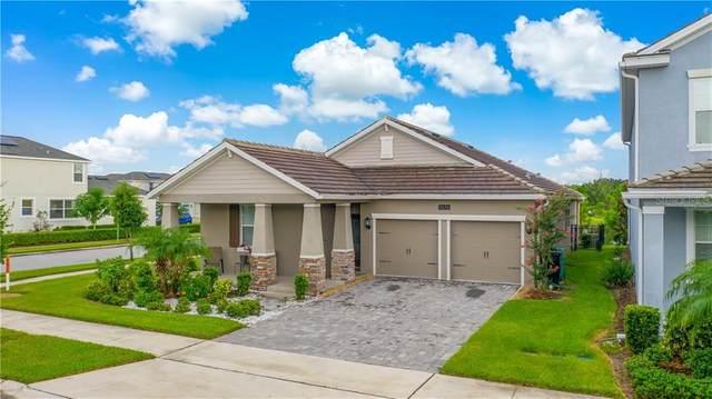 11676 Stein Street, Orlando, FL 32832 (MLS #S5038336) :: Pristine Properties