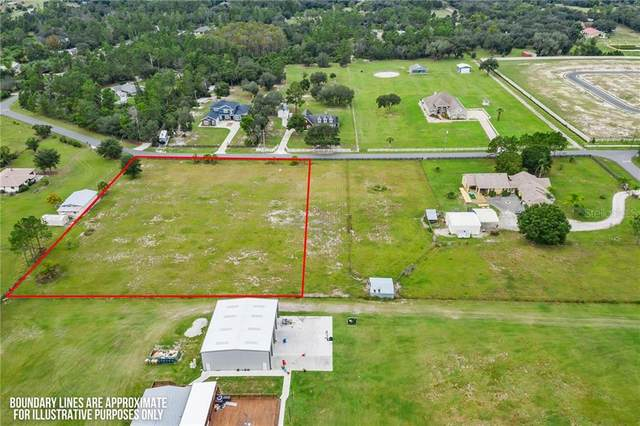Ron  Road Road, Saint Cloud, FL 34771 (MLS #S5038589) :: Rabell Realty Group