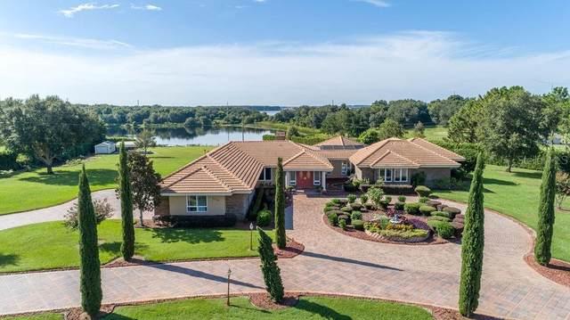 18124 Coralwood Lane, Groveland, FL 34736 (MLS #S5038787) :: Pepine Realty