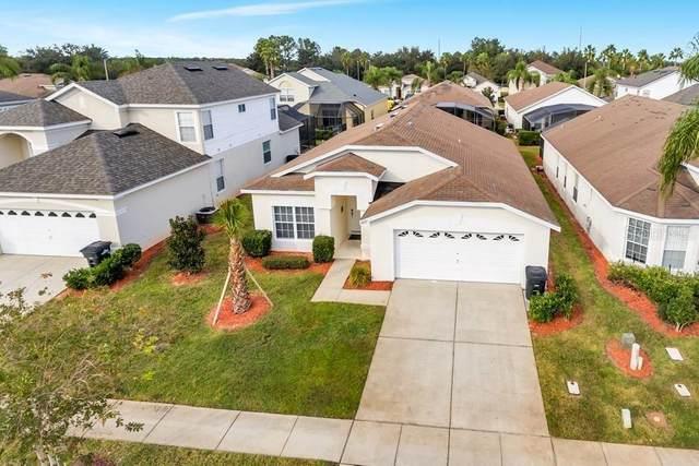 8021 King Palm Circle, Kissimmee, FL 34747 (MLS #S5038864) :: Pepine Realty