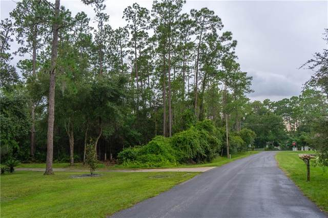 Henson Road, Orlando, FL 32832 (MLS #S5039042) :: Florida Life Real Estate Group