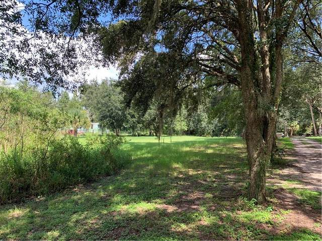 Locke Road, Davenport, FL 33837 (MLS #S5039304) :: Lockhart & Walseth Team, Realtors