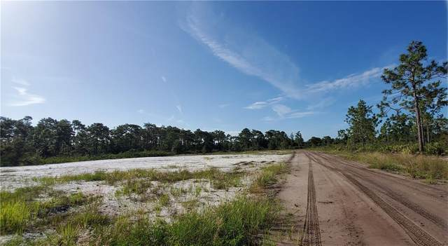 11424 E Irlo Bronson Memorial Highway, Saint Cloud, FL 34773 (MLS #S5040467) :: Alpha Equity Team