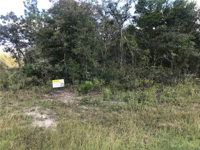 Slippery Rock Street, Webster, FL 33597 (MLS #S5041021) :: Griffin Group