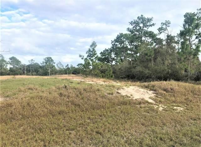 1317 Homosassa Court, Poinciana, FL 34759 (MLS #S5041072) :: Griffin Group