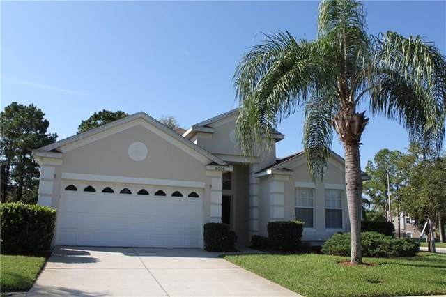 8000 King Palm Circle, Kissimmee, FL 34747 (MLS #S5041152) :: Gate Arty & the Group - Keller Williams Realty Smart