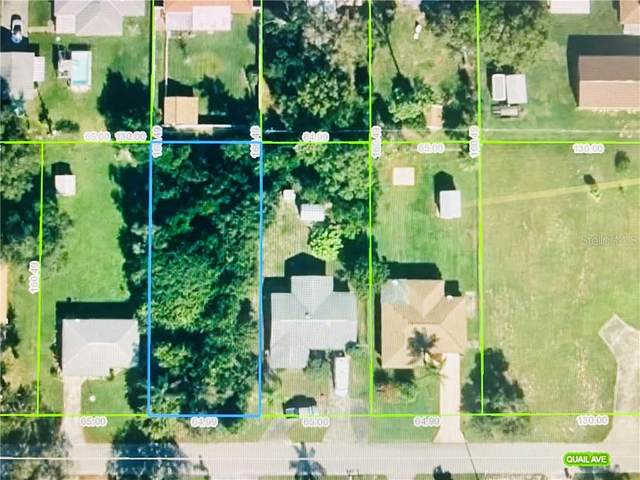 317 Quail Avenue, Sebring, FL 33872 (MLS #S5041189) :: BuySellLiveFlorida.com