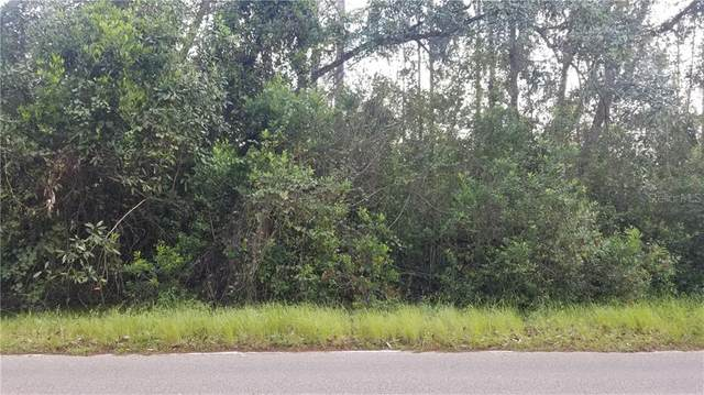 Sweet Hill Road, Polk City, FL 33868 (MLS #S5041383) :: Team Buky